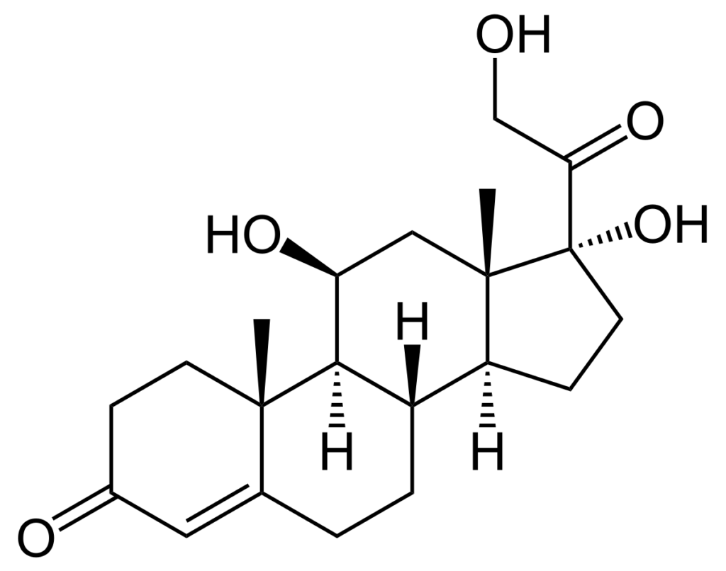 Cortisol hormoon